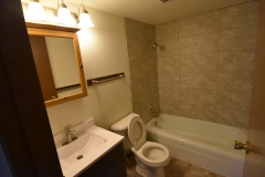 CassStreetApts_Lower_Unit_2Bedroom_Bathroom1